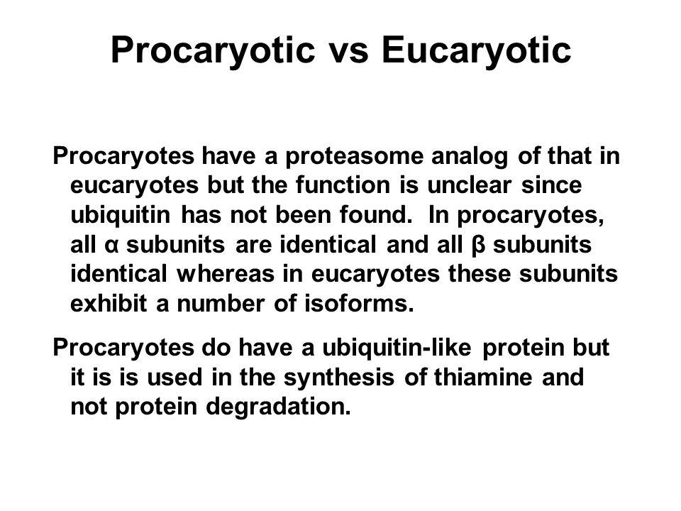 Procaryotic vs Eucaryotic