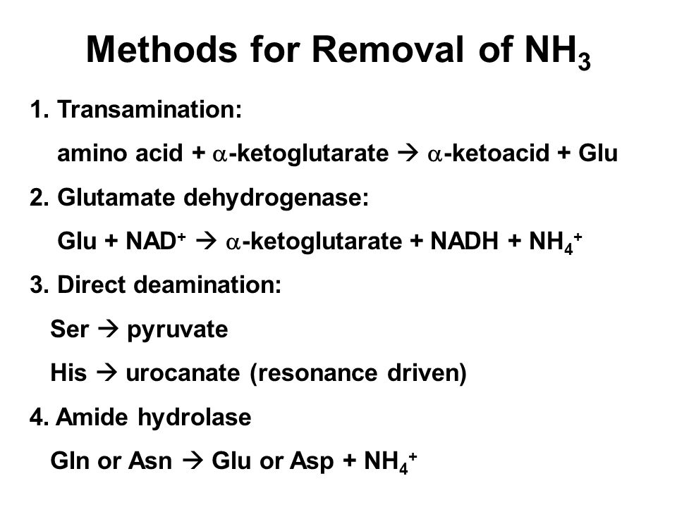 Methods for Removal of NH3