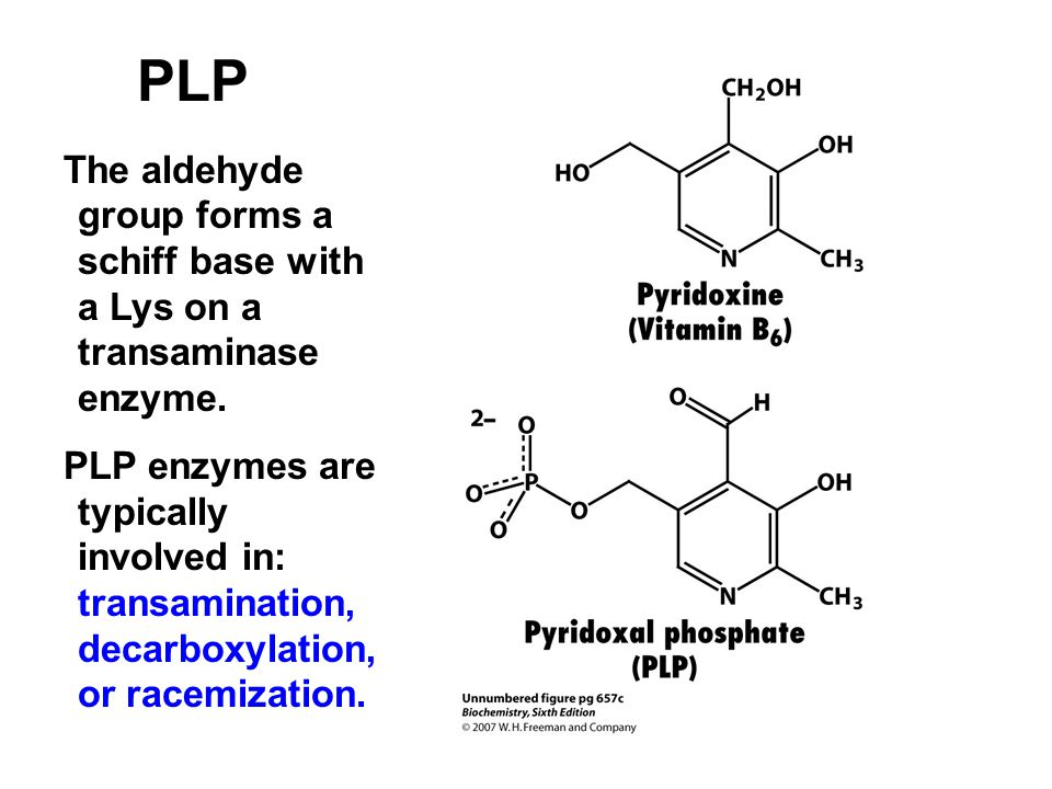 PLP The aldehyde group forms a schiff base with a Lys on a transaminase enzyme.