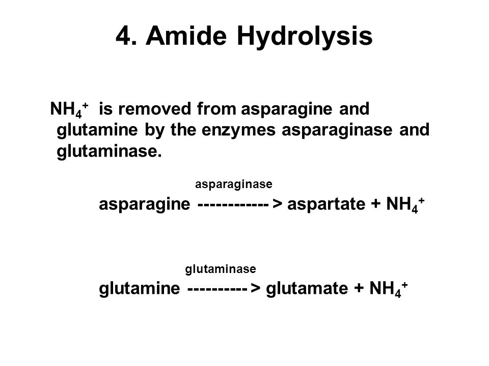 4. Amide Hydrolysis NH4+ is removed from asparagine and glutamine by the enzymes asparaginase and glutaminase.