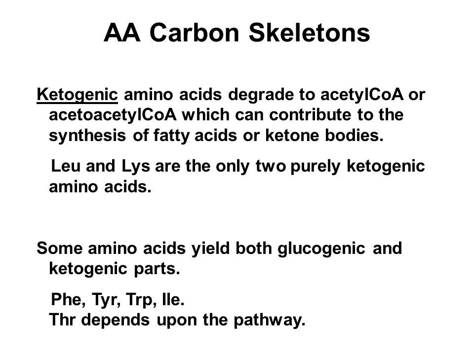 AA Carbon Skeletons