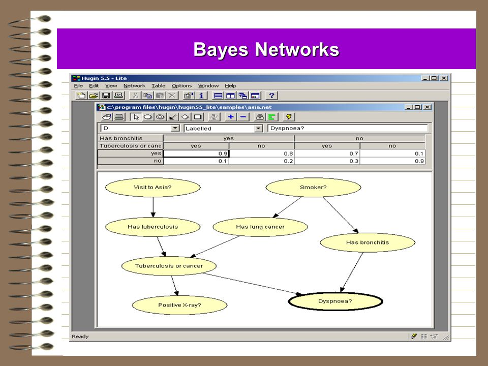 Bayes Networks