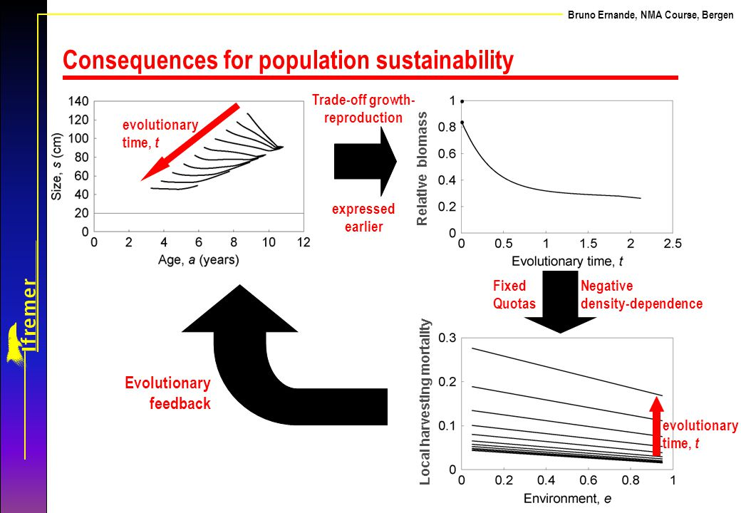 Consequences for population sustainability