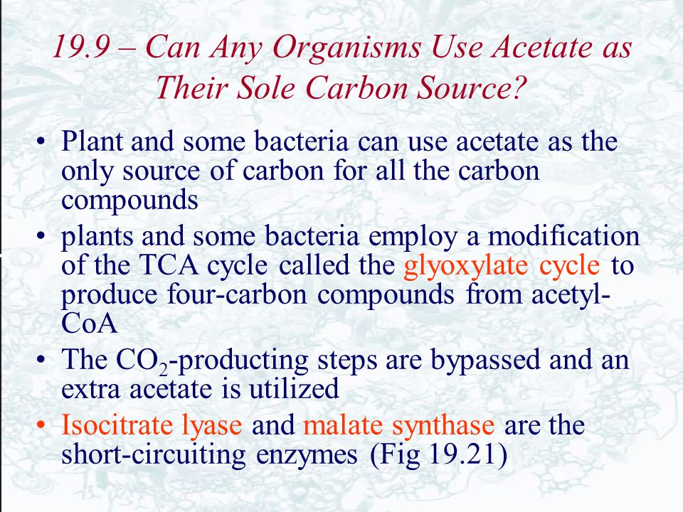 19.9 – Can Any Organisms Use Acetate as Their Sole Carbon Source