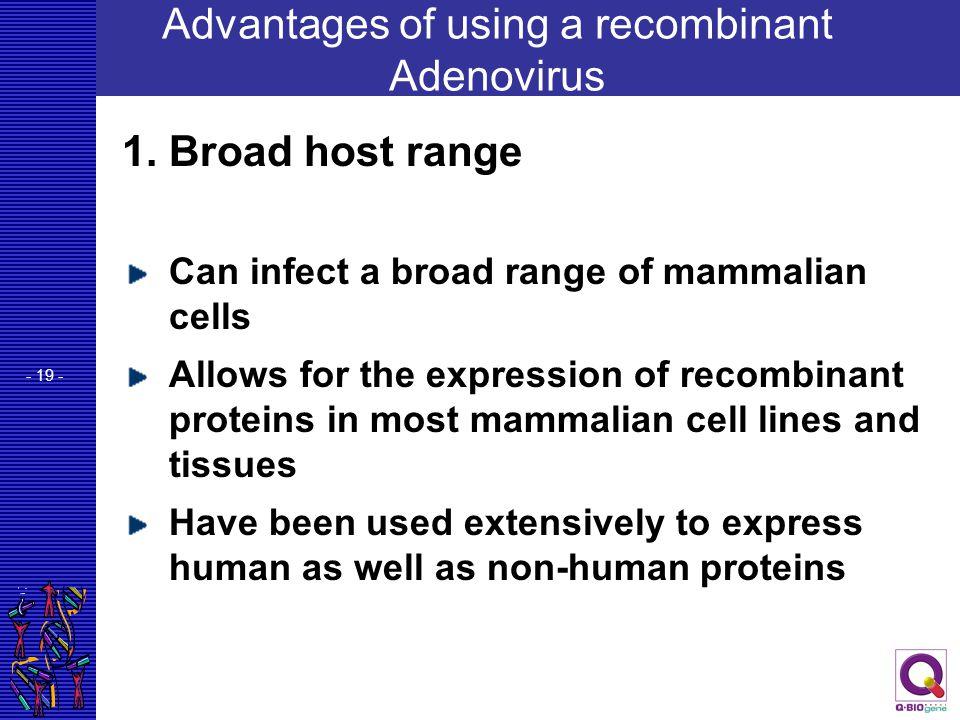 Advantages of using a recombinant Adenovirus