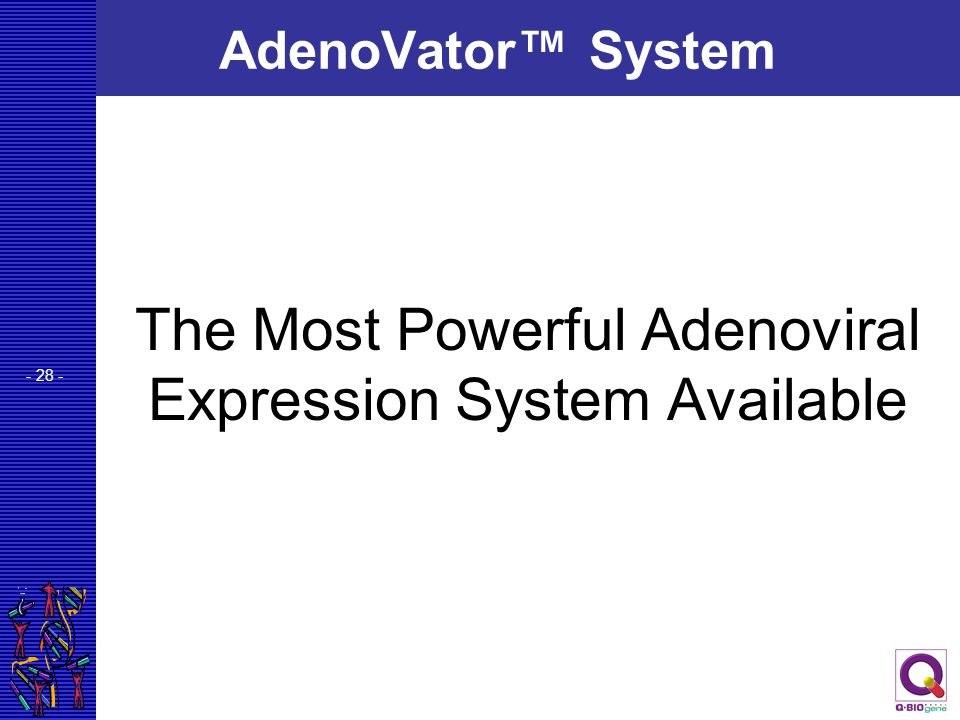 The Most Powerful Adenoviral Expression System Available