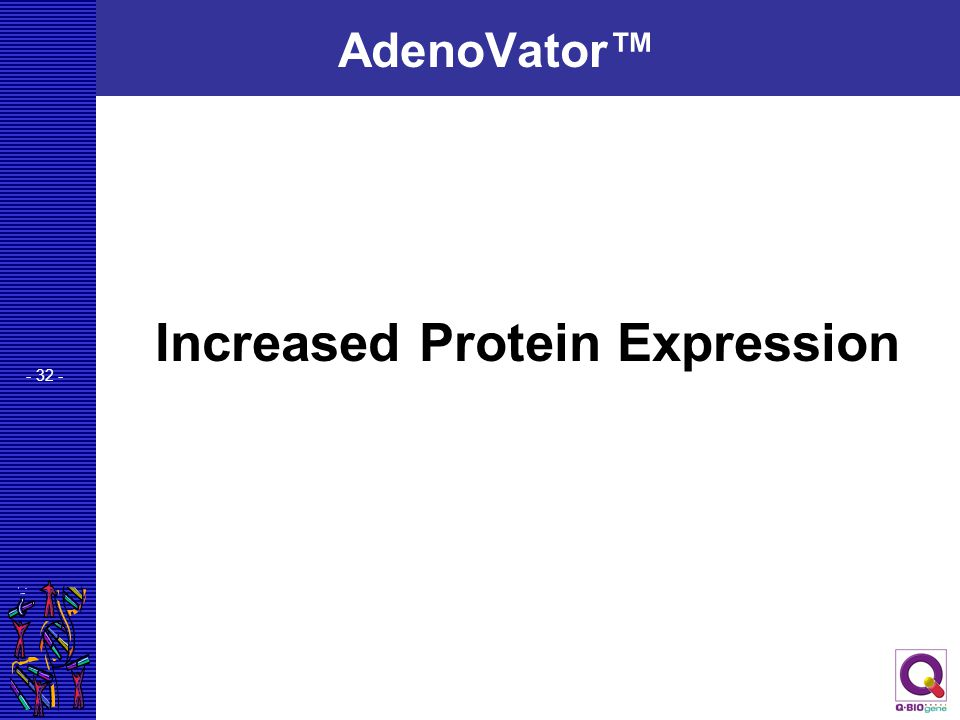 Increased Protein Expression