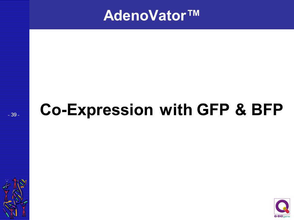 Co-Expression with GFP & BFP