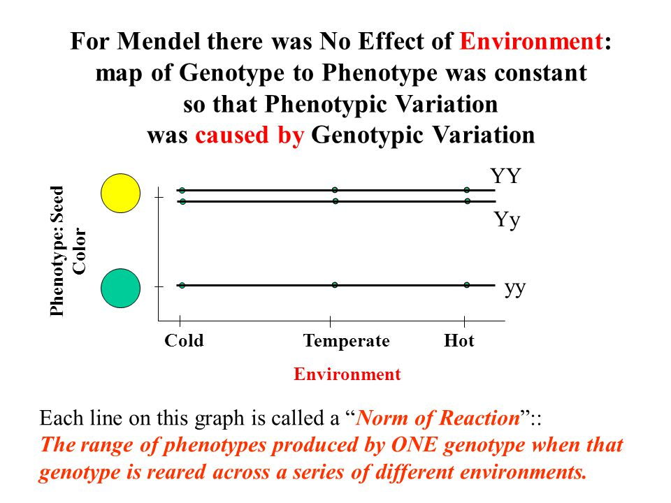 For Mendel there was No Effect of Environment: