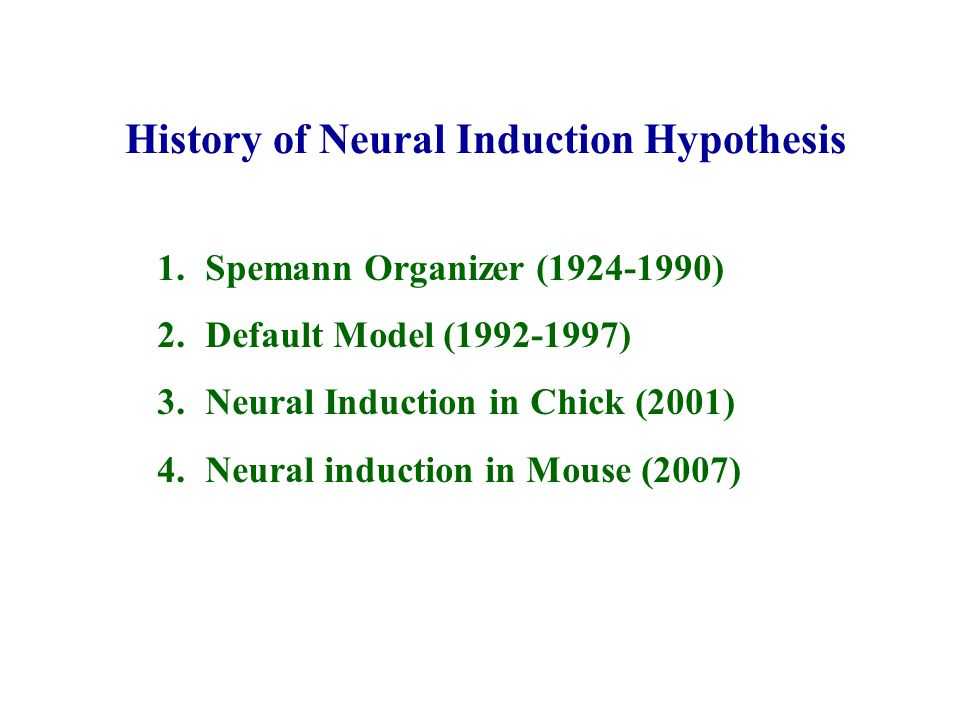History of Neural Induction Hypothesis