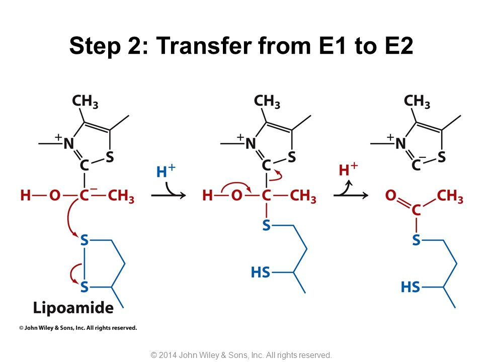 Step 2: Transfer from E1 to E2
