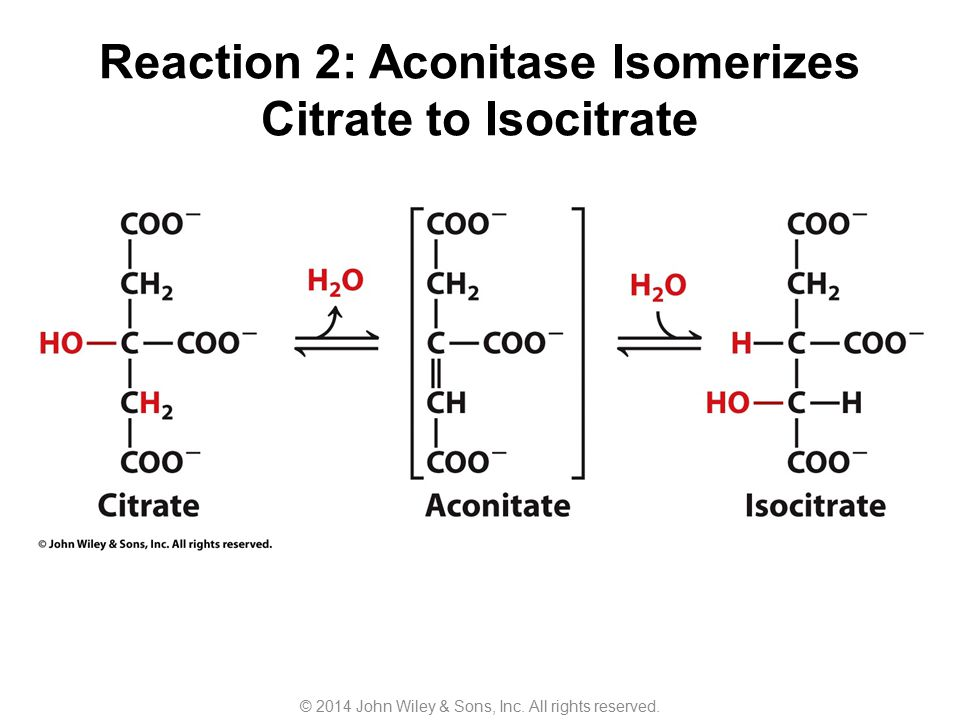Reaction 2: Aconitase Isomerizes Citrate to Isocitrate