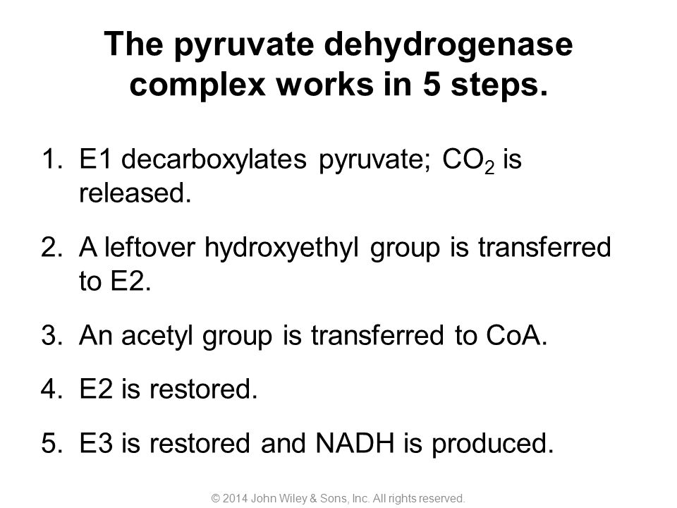 The pyruvate dehydrogenase complex works in 5 steps.
