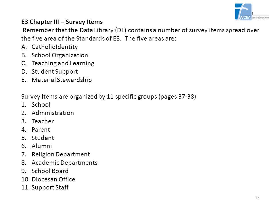 E3 Chapter III – Survey Items
