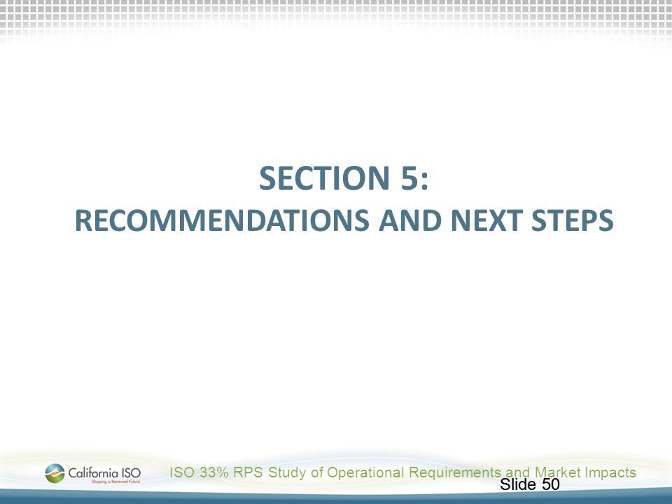 Section 5: Recommendations and Next StEPs