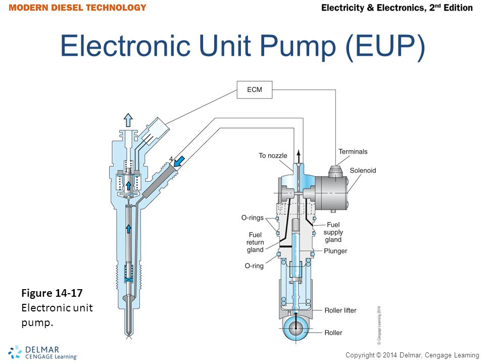 Electronic Unit Pump (EUP)