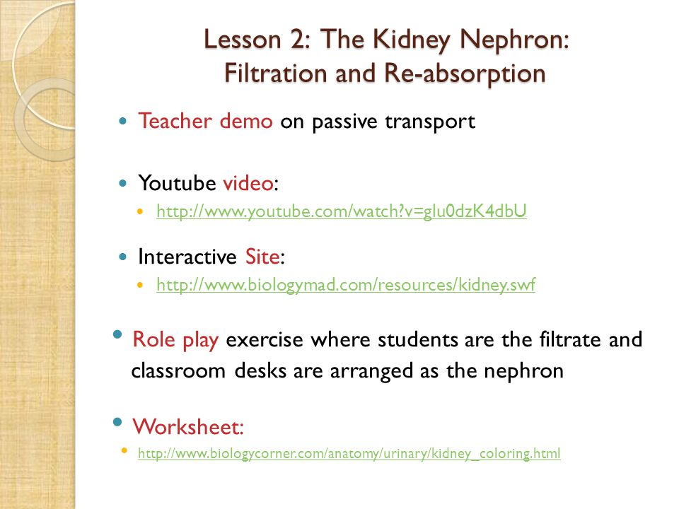 Lesson 2: The Kidney Nephron: Filtration and Re-absorption
