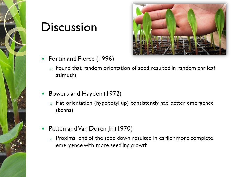Discussion Fortin and Pierce (1996) Bowers and Hayden (1972)