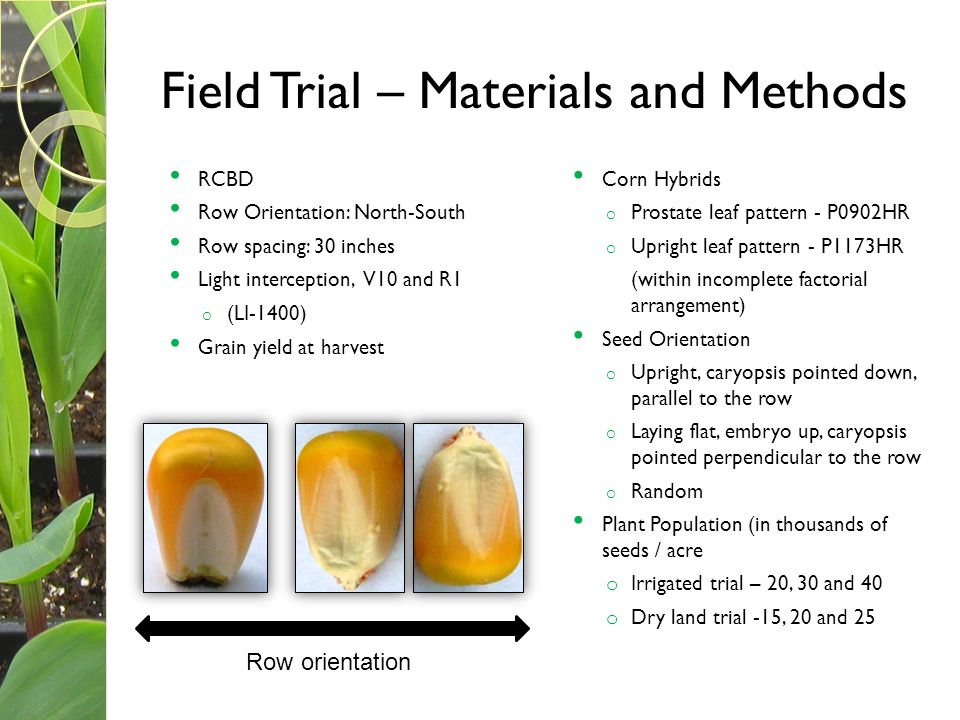 Field Trial – Materials and Methods