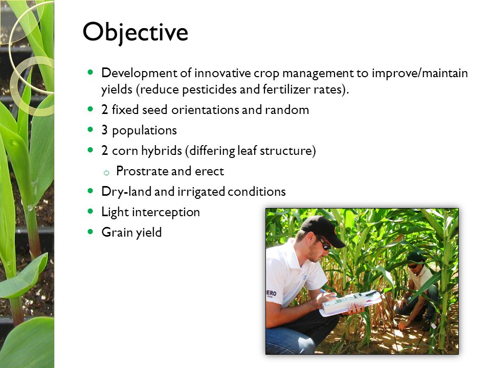 Objective Development of innovative crop management to improve/maintain yields (reduce pesticides and fertilizer rates).