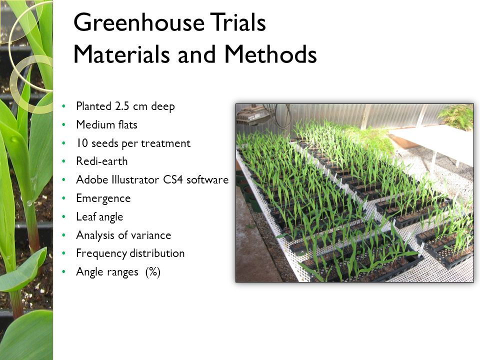 Greenhouse Trials Materials and Methods