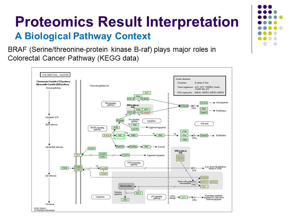 Proteomics Result Interpretation A Biological Pathway Context