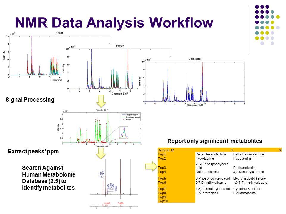 NMR Data Analysis Workflow