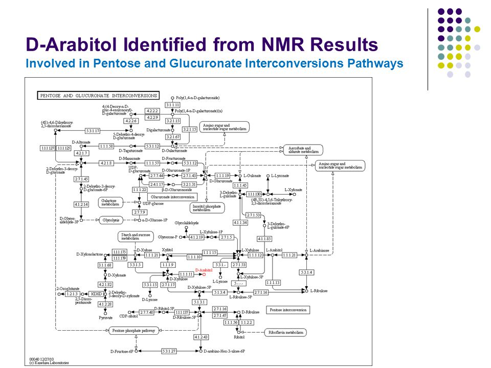 D-Arabitol Identified from NMR Results Involved in Pentose and Glucuronate Interconversions Pathways