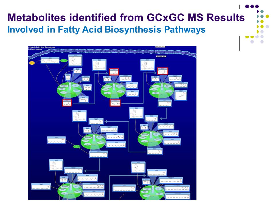 Metabolites identified from GCxGC MS Results Involved in Fatty Acid Biosynthesis Pathways