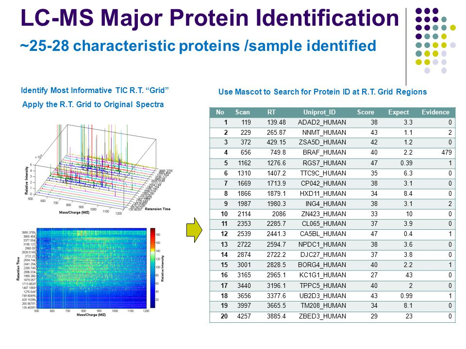 LC-MS Major Protein Identification ~25-28 characteristic proteins /sample identified