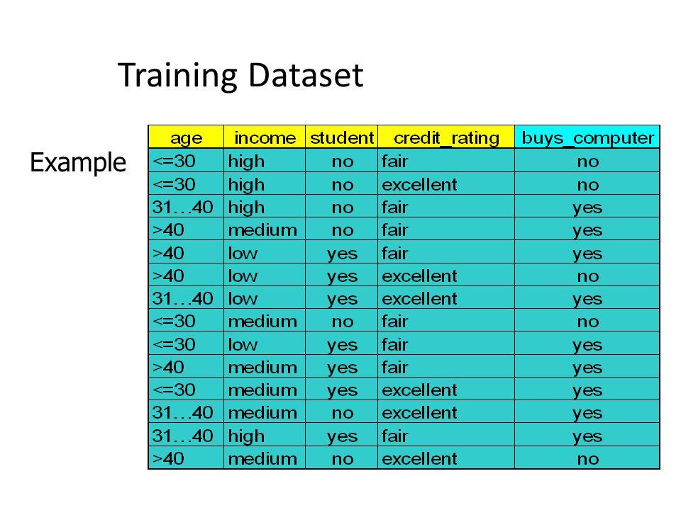 Training Dataset Example