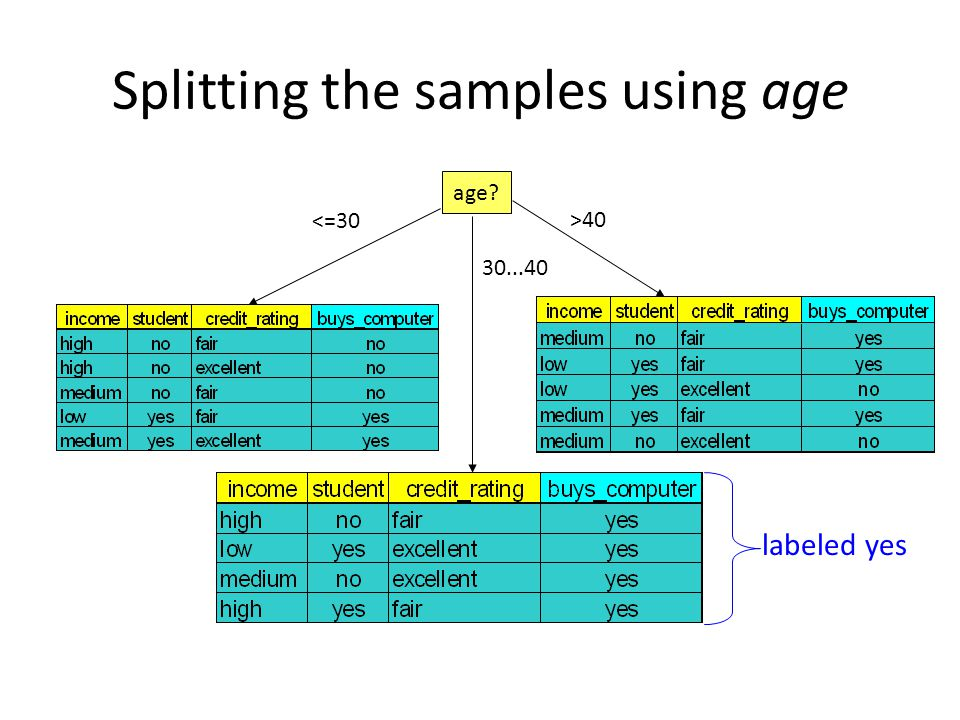 Splitting the samples using age