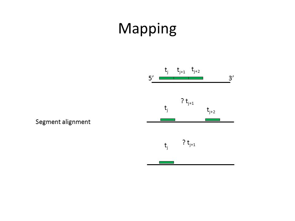 Mapping tj tj+1 tj+2 5' 3' tj+1 tj tj+2 Segment alignment tj+1 tj