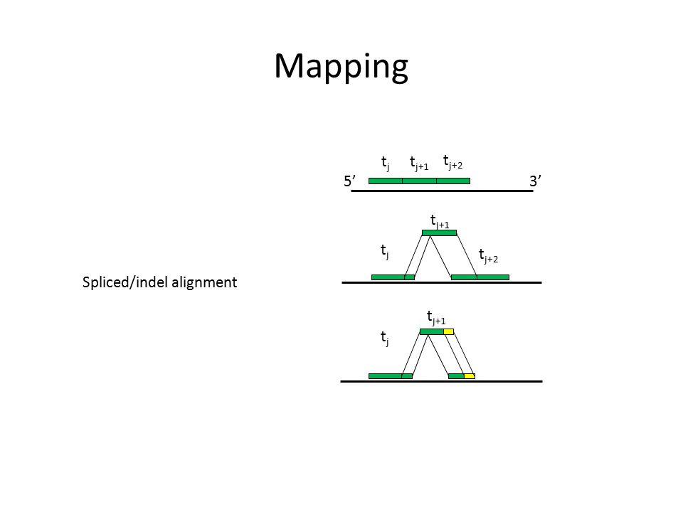 Mapping tj tj+1 tj+2 5' 3' tj+1 tj tj+2 Spliced/indel alignment tj+1