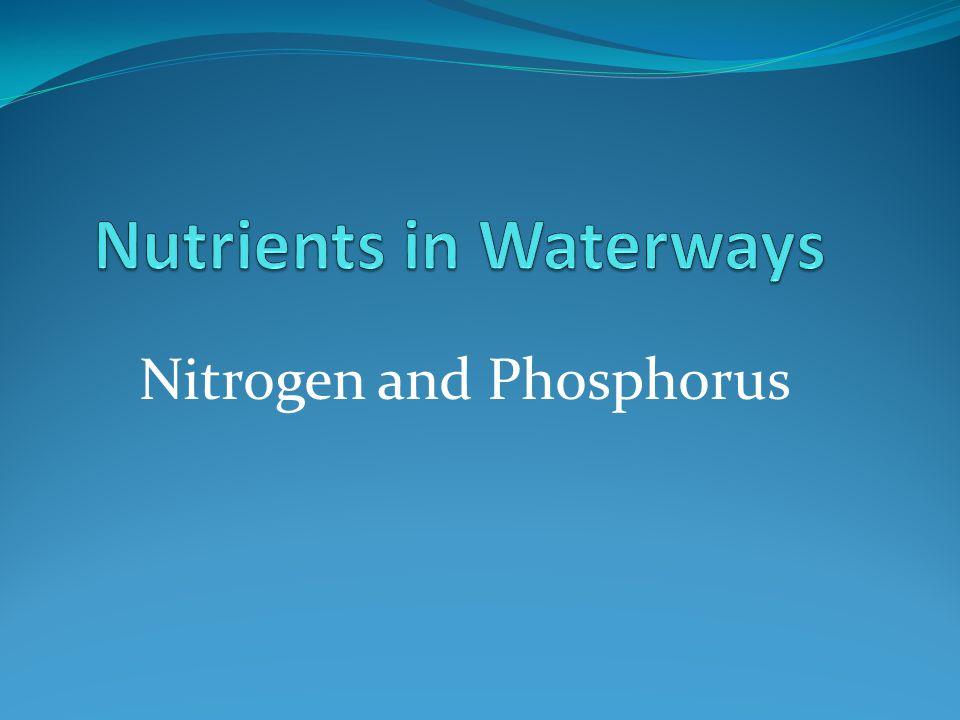 Nutrients in Waterways