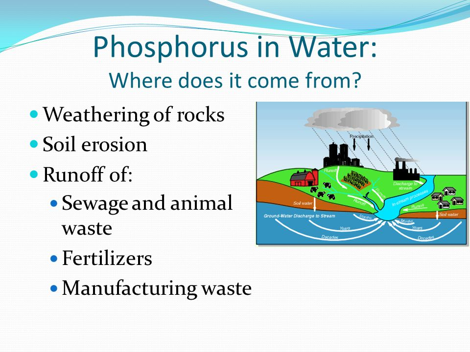 Phosphorus in Water: Where does it come from