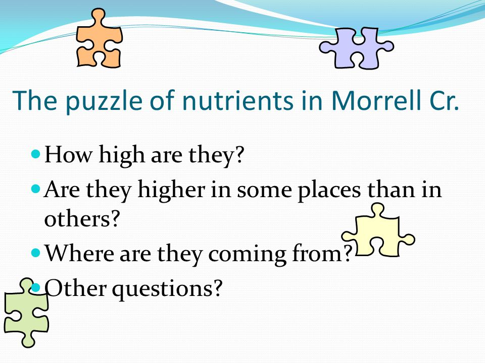The puzzle of nutrients in Morrell Cr.