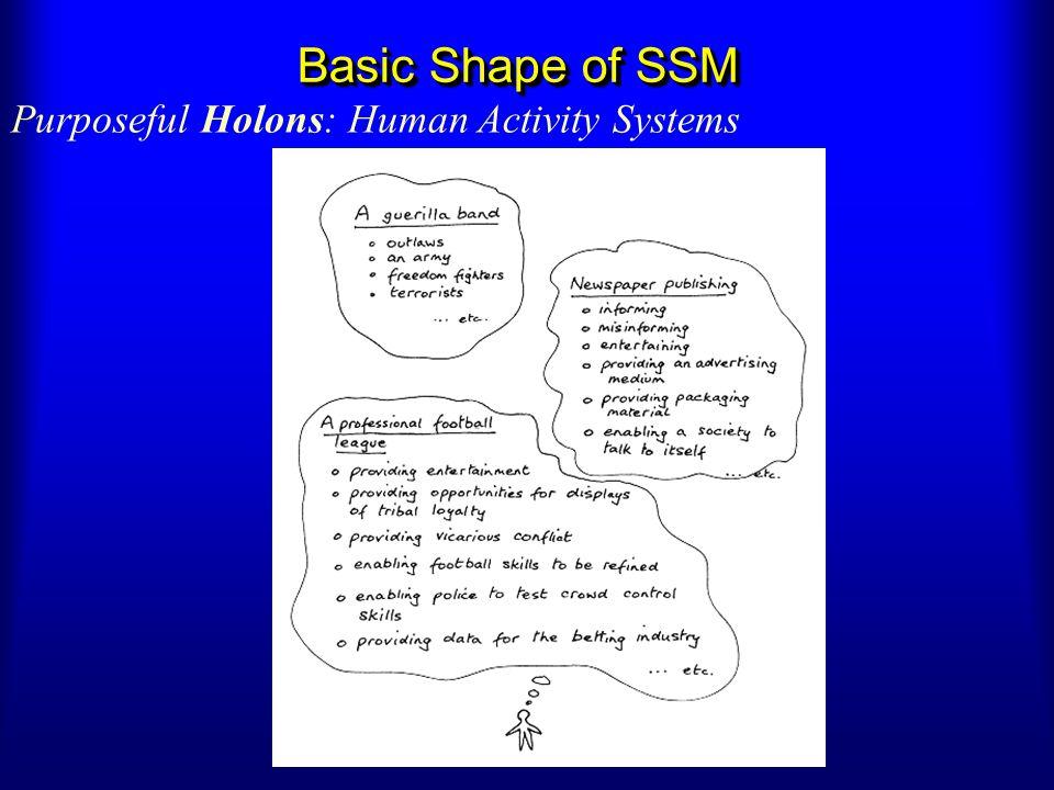 Basic Shape of SSM Purposeful Holons: Human Activity Systems