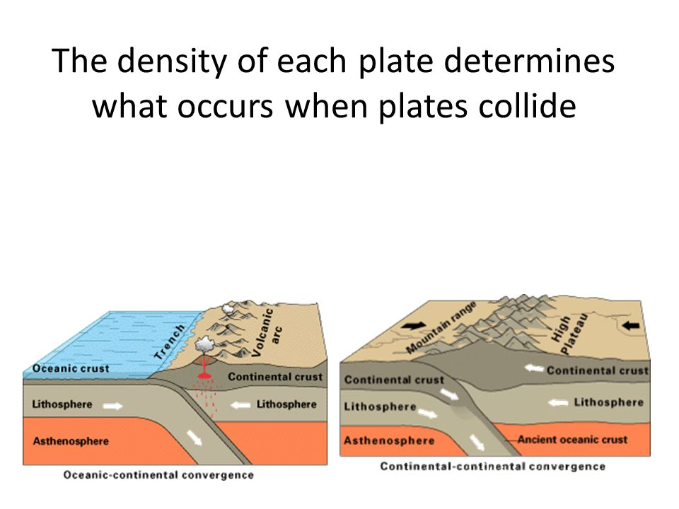 The density of each plate determines what occurs when plates collide