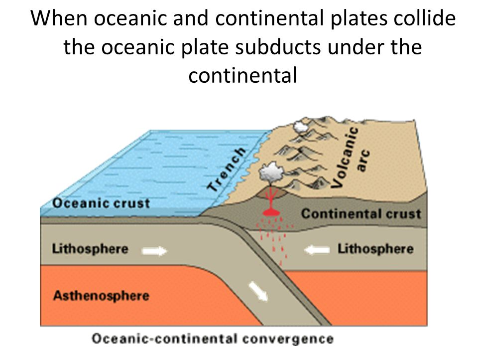 When oceanic and continental plates collide the oceanic plate subducts under the continental
