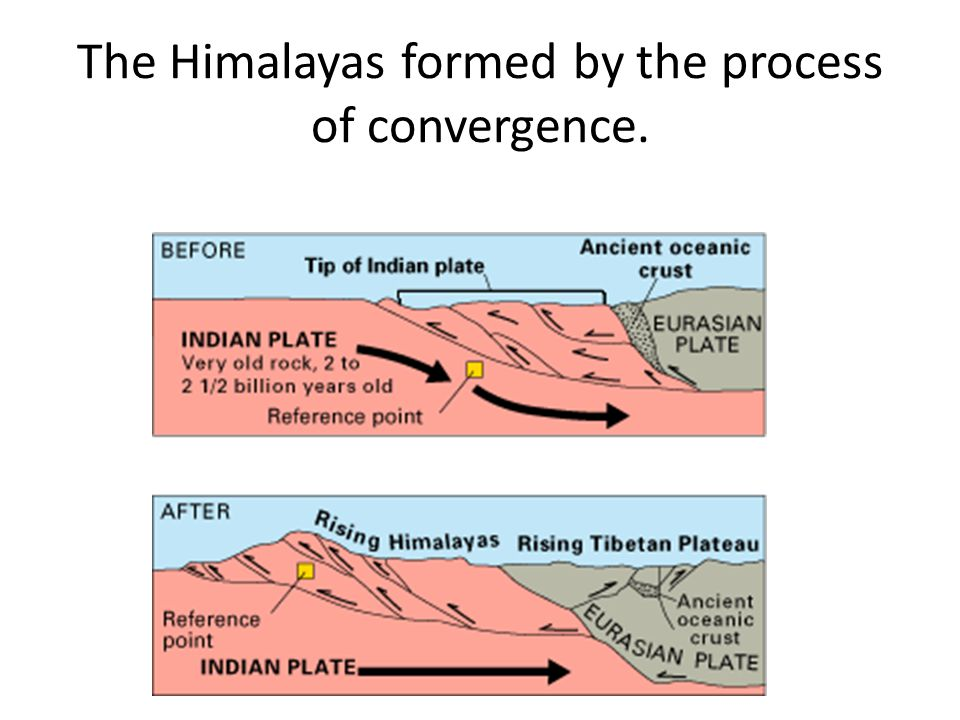 The Himalayas formed by the process of convergence.