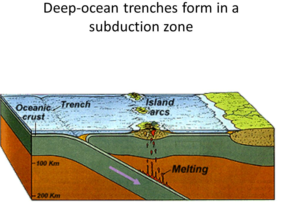 Deep-ocean trenches form in a subduction zone
