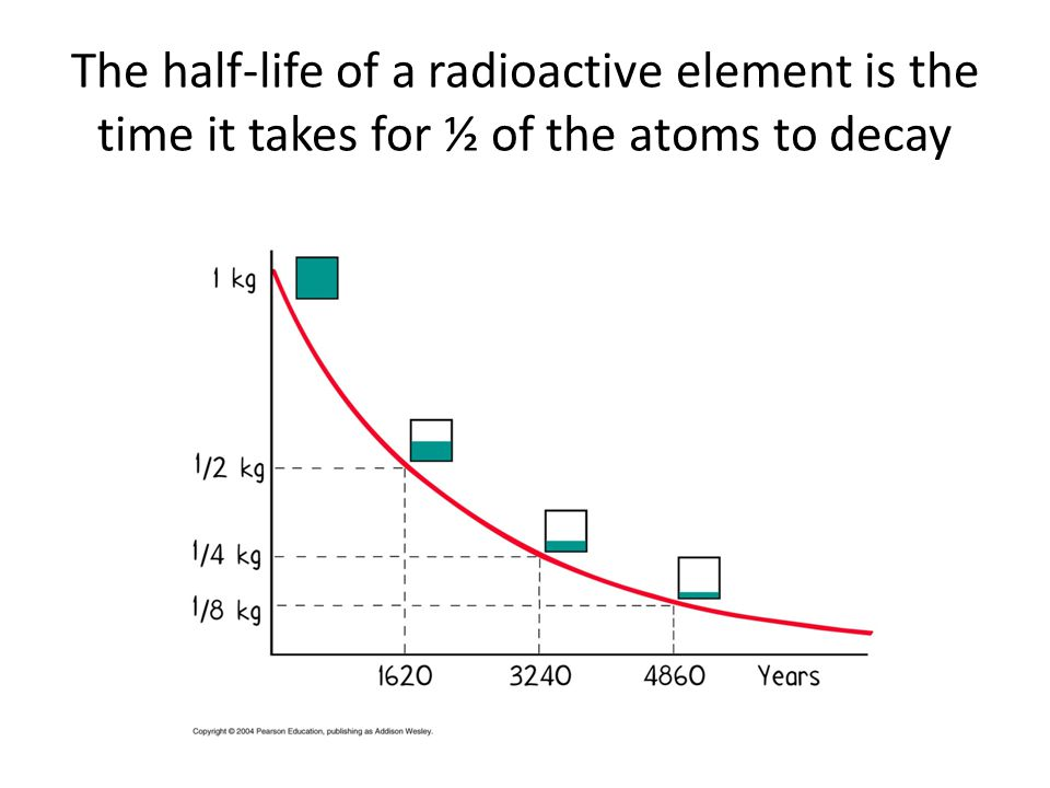 The half-life of a radioactive element is the time it takes for ½ of the atoms to decay