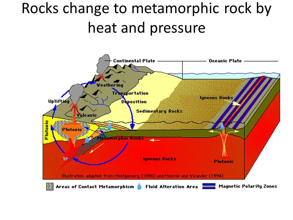 Rocks change to metamorphic rock by heat and pressure