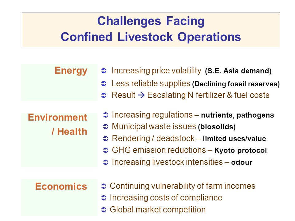 Challenges Facing Confined Livestock Operations
