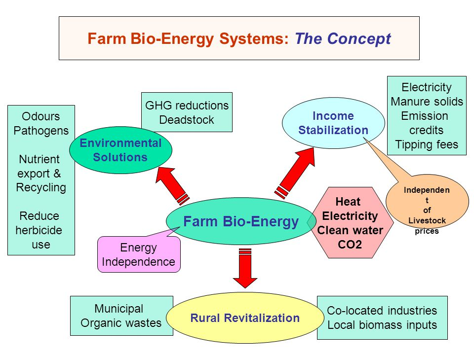 Farm Bio-Energy Systems: The Concept