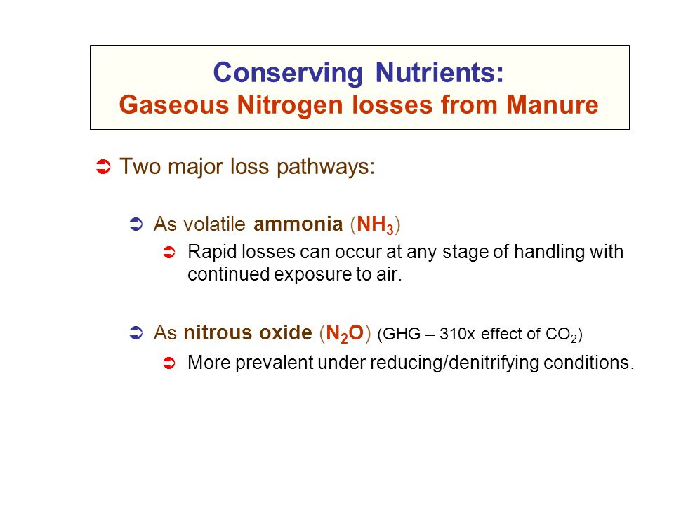 Conserving Nutrients: Gaseous Nitrogen losses from Manure