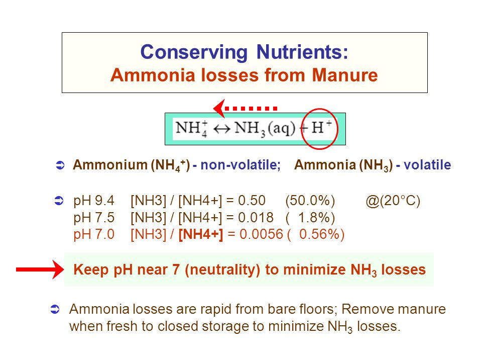Conserving Nutrients: Ammonia losses from Manure