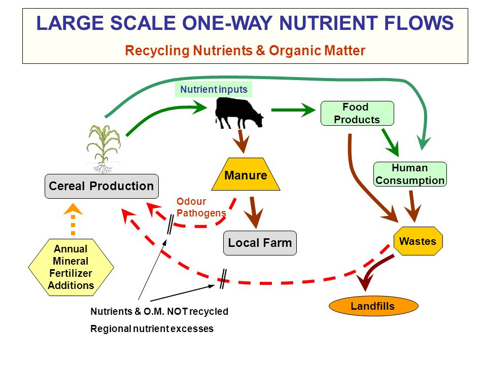 LARGE SCALE ONE-WAY NUTRIENT FLOWS