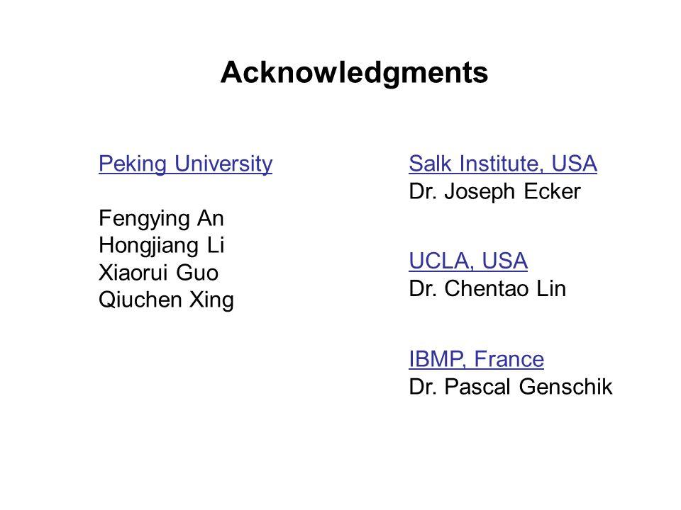 Acknowledgments Peking University Fengying An Hongjiang Li Xiaorui Guo